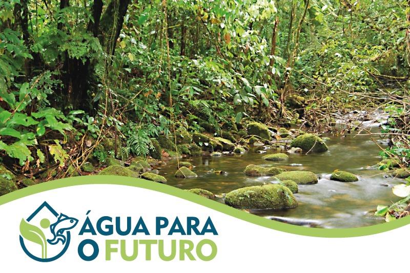 MPPR lança projeto Água para o Futuro, voltado à proteção de nascentes que abastecem a RMC