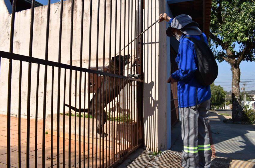 Leiturista da Sanepar é atacado por cachorros quando retirava a leitura da água em uma residência em Palmital