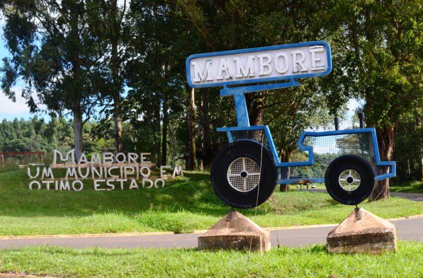 Homem que se passou por caminhoneiro para furar a fila da vacinação em Mamborê é acionado para reparação de dano moral coletivo